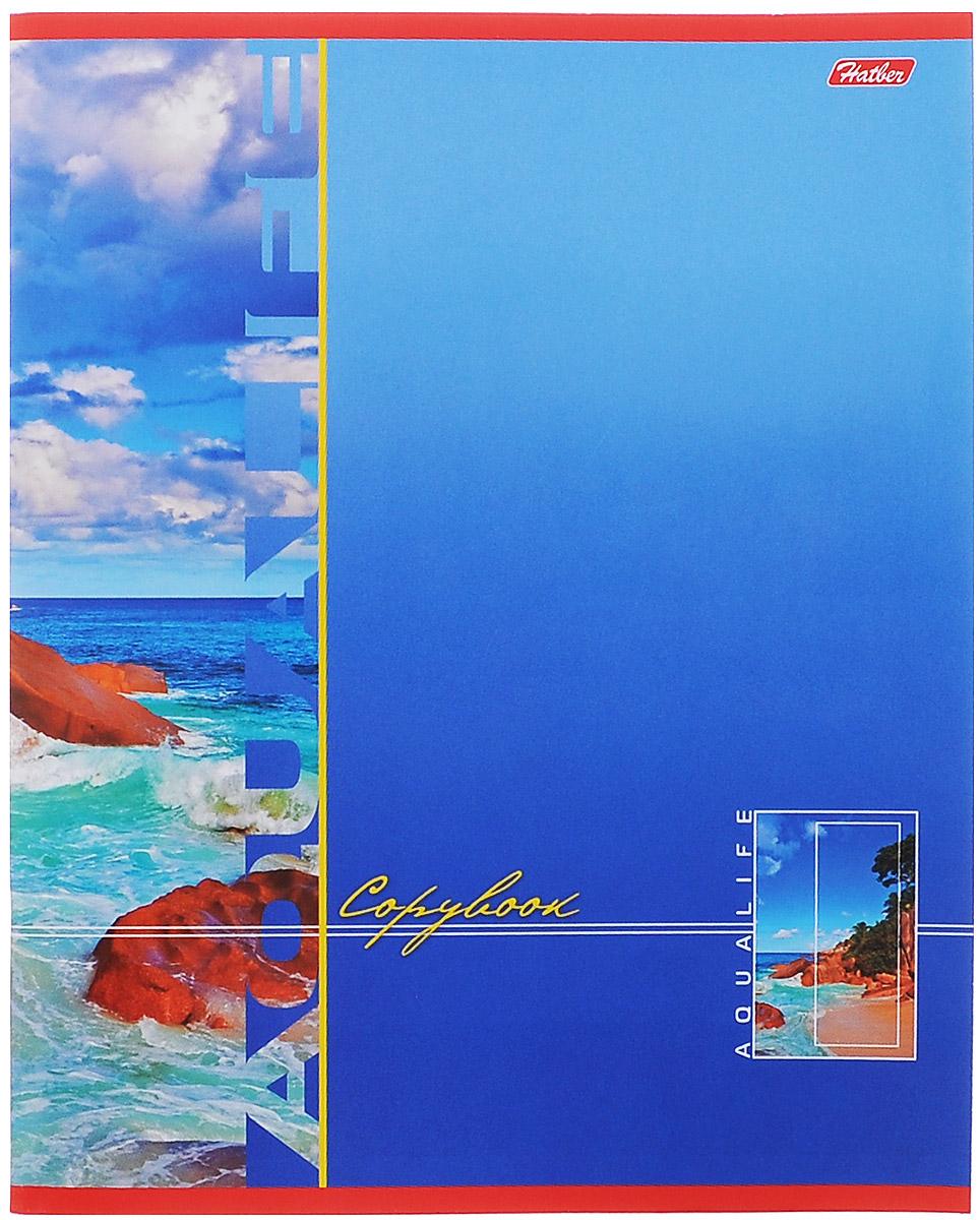 Hatber Тетрадь в клетку Аквалайф, 96 листов, формат А5, цвет: голубой, оранжевый96Т5B1Тетрадь в клетку Hatber Аквалайф предназначена для объемных записей и незаменима для старшеклассников и студентов.Обложка тетради выполнена из плотного картона. Внутренний блок тетради состоит из 96 листов белой бумаги с линовкой в клетку голубого цвета с полями. Листы тетради соединены скобами.