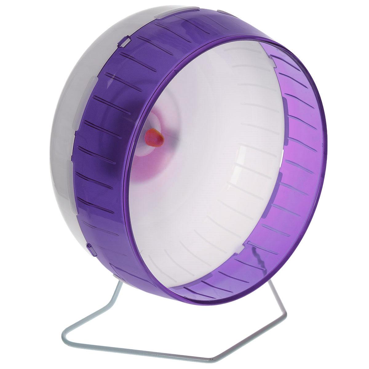 Колесо для грызунов I.P.T.S., цвет: белый, фиолетовый, 29 см285154_белый, фиолетовыйКолесо для грызунов I.P.T.S. - удобное и бесшумное, с высоким уровнем безопасности. Поместив его в клетку, вы обеспечите своему питомцу необходимую физическую активность. Сплошная внутренняя поверхность без щелей убережет питомца от возможных травм. Можно установить на подставку или прикрепить к решетке. Колесо можно использовать для дегу, крыс или молодых шиншилл. Диаметр колеса: 29 см.