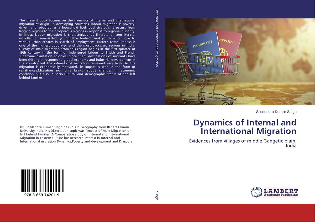 Dynamics of Internal and International Migration driven to distraction