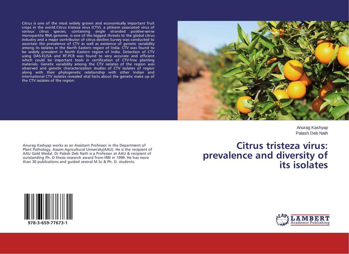 Citrus tristeza virus: prevalence and diversity of its isolates tissue culture of citrus reticulata blanco kinnow