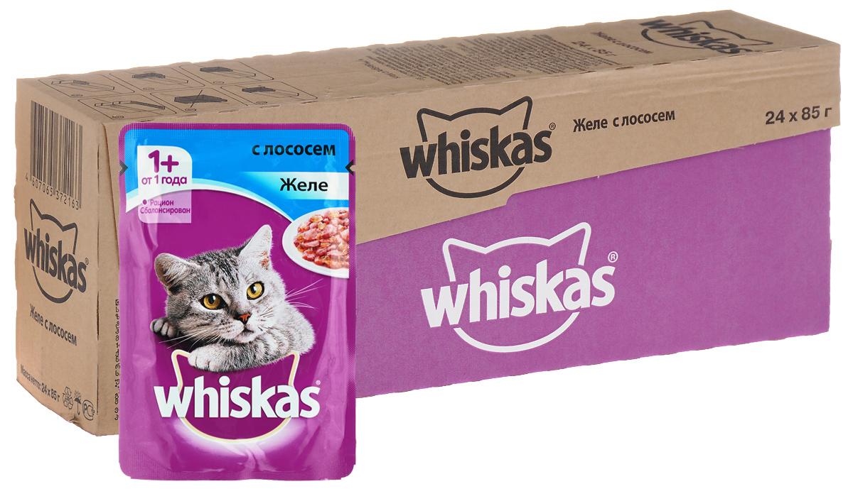 Консервы Whiskas для кошек от 1 года, желе с лососем, 85 г, 24 шт39893Консервы для кошек от 1 года Whiskas - полнорационный сбалансированный корм, который идеально подойдет вашему любимцу. Аппетитное желе приготовлено с учетом потребностей взрослых кошек. Специально сбалансированный рацион содержит все питательные вещества, витамины и минералы, необходимые кошке в этом возрасте. Консервы не содержат сои, консервантов, ароматизаторов, искусственных красителей и усилителей вкуса.В рацион домашнего любимца нужно обязательно включать консервированный корм, ведь его главные достоинства - высокая калорийность и питательная ценность. Консервы лучше усваиваются, чем сухие корма. Также важно, чтобы животные, имеющие в рационе консервированный корм, получали больше влаги.Состав: мясо и субпродукты, рыба (в том числе лосось минимум 4%), таурин, злаки, витамины, минеральные вещества.Пищевая ценность в 100 г: белки - 7,5 г, жиры - 3,5 г, клетчатка - 0,3 г, зола - 2,5 г, витамин А - не менее 150 МЕ, витамин Е - не менее 1,0 мг, влага - 85 г.Энергетическая ценность в 100 г: 60 ккал/251 кДж.Товар сертифицирован.В упаковке 24 пакетика по 85 г.