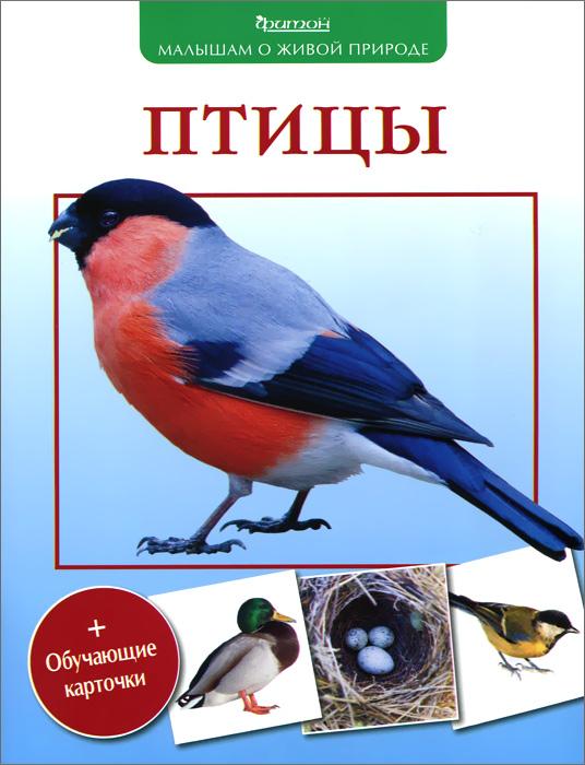 В. А. Вишневский Птицы фонарь для чтения книг купить