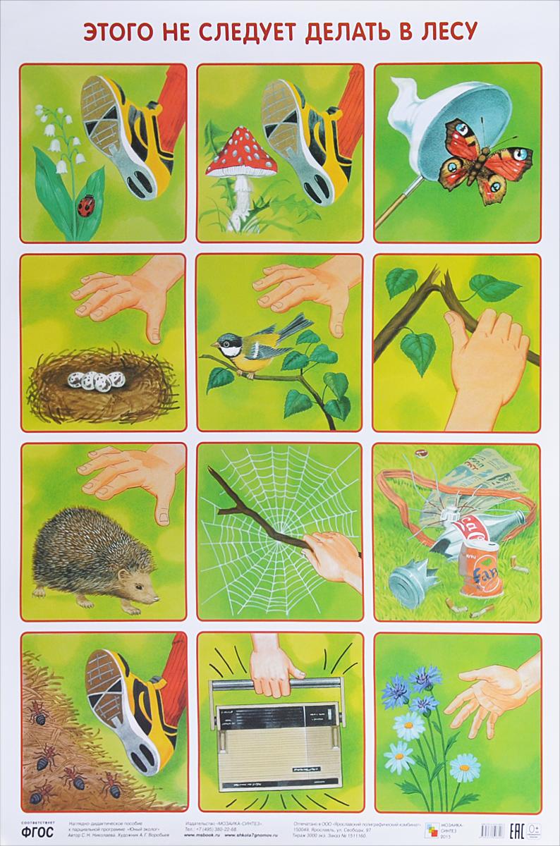 Википедии год экологии в детском саду группа
