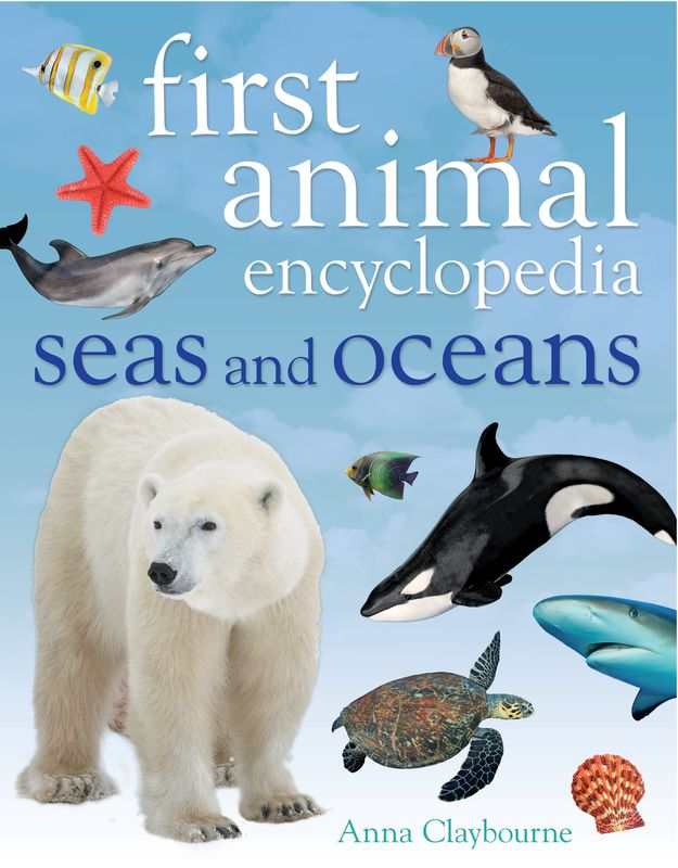 First Animal Encyclopedia Seas and Oceans baricco a ocean sea