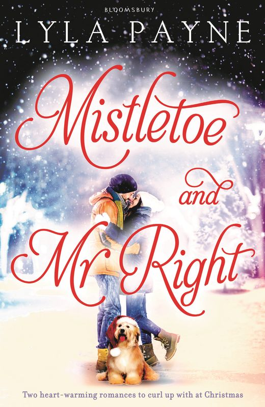 Mistletoe and Mr. Right new original fotek a3g 4mx mr 1 warranty for two year