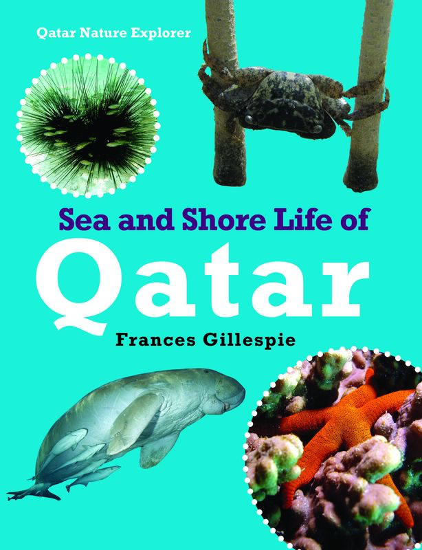 Sea and Shore Life of Qatar reptiles and amphibians of qatar