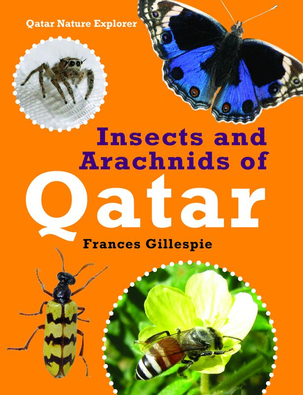 Insects and Arachnids of Qatar secret weapons – defenses of insects spiders scorpions and other many–legged creatures