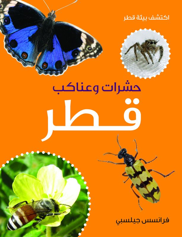 Hasharat Qatar (Insects and Arachnids of Qatar) reptiles and amphibians of qatar