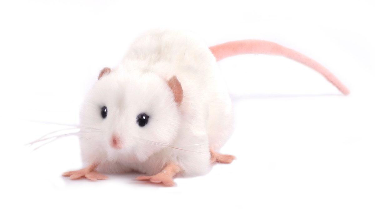 Hansa Мягкая игрушка Крыса белая, 12 см мягкая игрушка hansa пони с мягкой набивкой 35 см