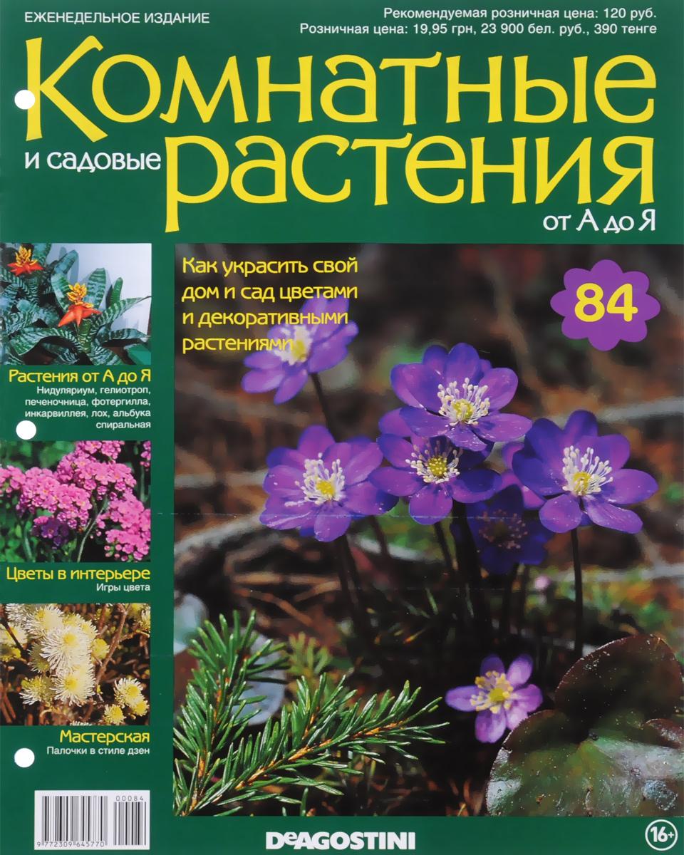 Журнал Комнатные и садовые растения. От А до Я №84 математика для дошкольников от а до я