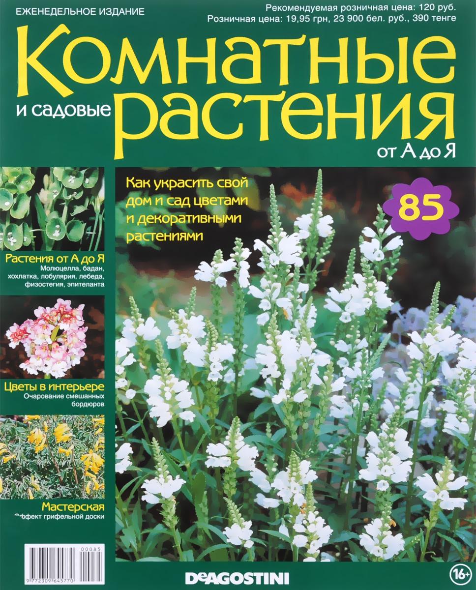 Журнал Комнатные и садовые растения. От А до Я №85 математика для дошкольников от а до я