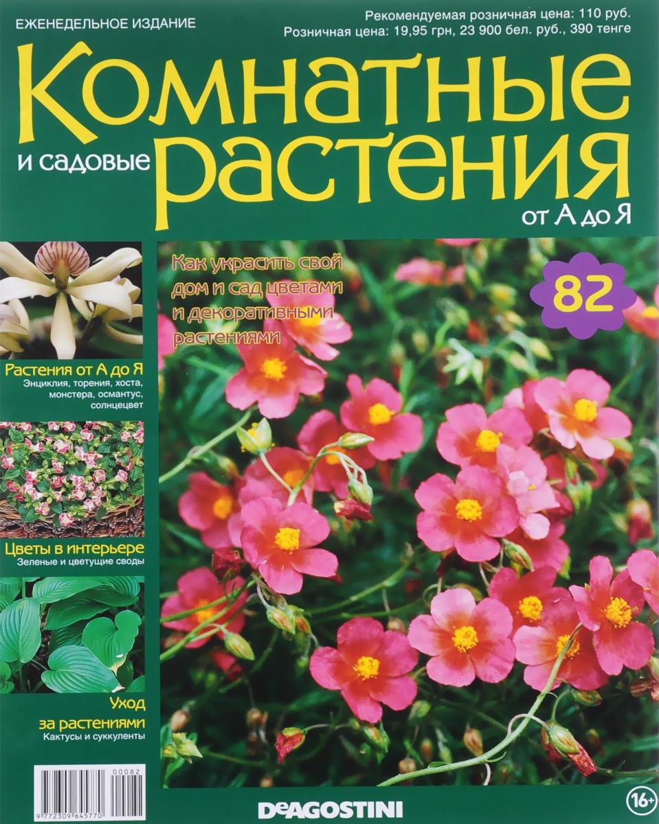 Журнал Комнатные и садовые растения. От А до Я №82 математика для дошкольников от а до я