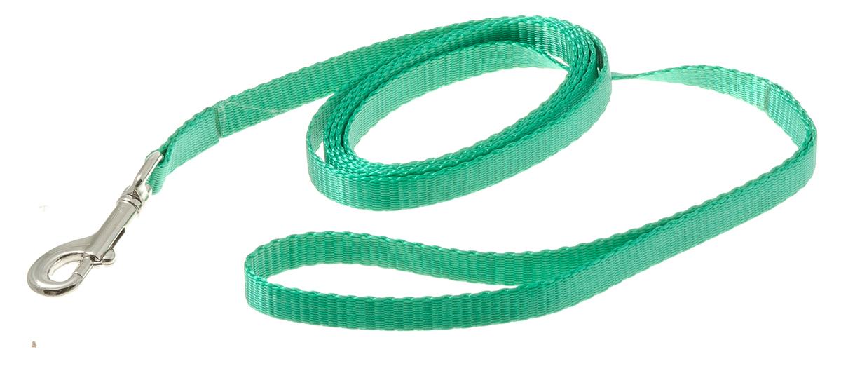Поводок для собак V.I.Pet, цвет: зеленый, ширина 10 мм, длина 1,5 м73-0925Поводок с карабином V.I.Pet, изготовленный из нейлона, предназначен для выставок и повседневного выгула. Материал поводка отличается повышенной прочностью, мало подвержен механическому воздействию, поэтому надолго сохранит аккуратный внешний вид и насыщенность цвета. Вращающийся вертлюг карабина предотвращает перекручивание поводка.