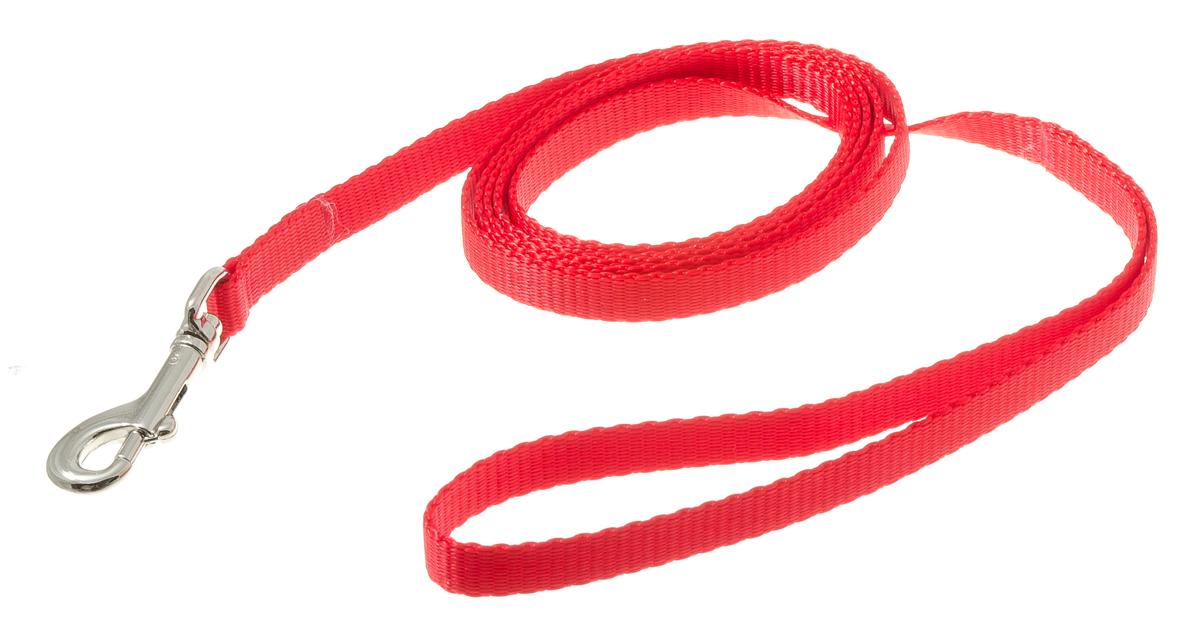 Поводок для собак V.I.Pet, цвет: красный, ширина 10 мм, длина 1,5 м73-0927Поводок с карабином V.I.Pet, изготовленный из нейлона, предназначен для выставок и повседневного выгула. Материал поводка отличается повышенной прочностью, мало подвержен механическому воздействию, поэтому надолго сохранит аккуратный внешний вид и насыщенность цвета. Вращающийся вертлюг карабина предотвращает перекручивание поводка.