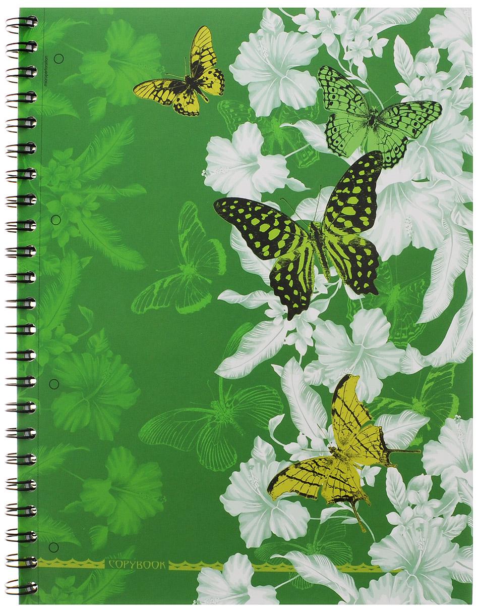 Полиграфика Тетрадь в клетку Butterfly Waltz 120 листов формат А4 цвет зеленый120243654-37655_зеленыйТетрадь в клетку Полиграфика Butterfly Waltz представлена в формате А4 в твердом переплете с изображением бабочек. Листы разлинованы в голубую клетку с полями. Каждый лист имеет микроперфорацию по отрывному краю и четыре отверстия для колец.Вне зависимости от профессии и рода деятельности у человека часто возникает потребность сделать какие-либо заметки. Именно поэтому всегда удобно иметь эту тетрадь под рукой, особенно если вы творческая личность и постоянно генерируете новые идеи. Тетрадь содержит удобный календарь на 2015-2018 годы.