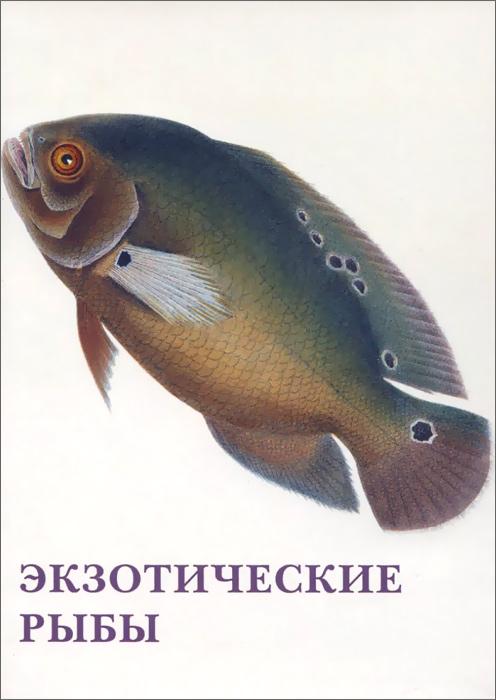 Экзотические рыбы (набор из 15 открыток) рыбы набор из 15 открыток