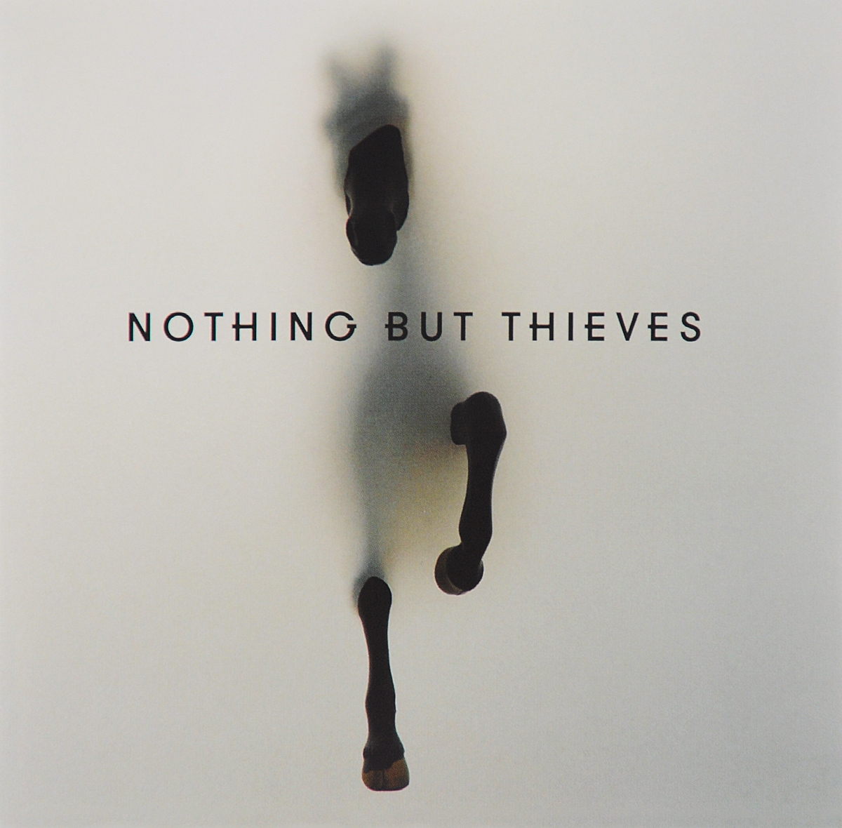 Nothing But Thieves Nothing But Thieves. Nothing But Thieves the swan thieves