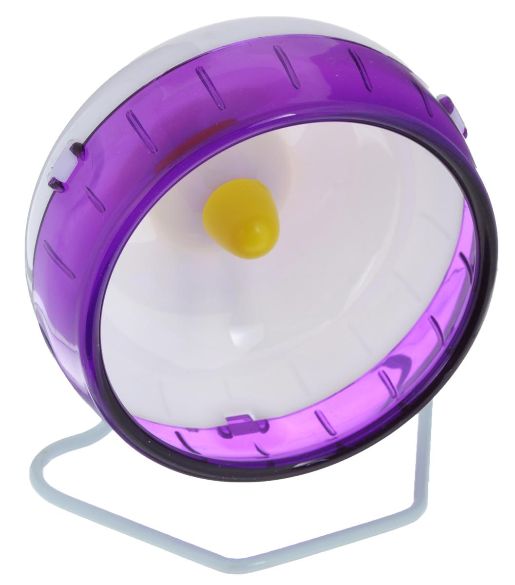 Колесо для грызунов I.P.T.S., цвет: белый, фиолетовый, диаметр 12 см285150_белый, фиолетовыйКолесо для грызунов I.P.T.S., выполненное из прочного пластик и металла, очень удобное и бесшумное, с высоким уровнем безопасности. Поместив его в клетку, вы обеспечите своему питомцу необходимую физическую активность. Сплошная внутренняя поверхность без щелей убережет хомячка от возможных травм. Можно установить на подставку или прикрепить к решетке. Предназначено для карликовых хомяков и мышей. Диаметр колеса: 12 см.