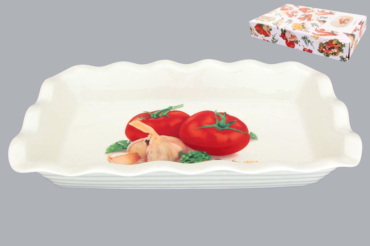 Блюдо для заливного Elan Gallery Помидоры, 650 мл101194Сервировочное блюдо Elan Gallery Помидоры, изготовленное из керамики, прекрасно подойдет для заливного или холодца и для хранения слоеных салатов. Блюдо оформлено рисунком с изображением продуктов. Такое блюдо украсит сервировку вашего стола и подчеркнет прекрасный вкус хозяйки. Не использовать в микроволновой печи.Размер блюда (Д х Ш х В): 27 см х 15 см х 4,5 см.