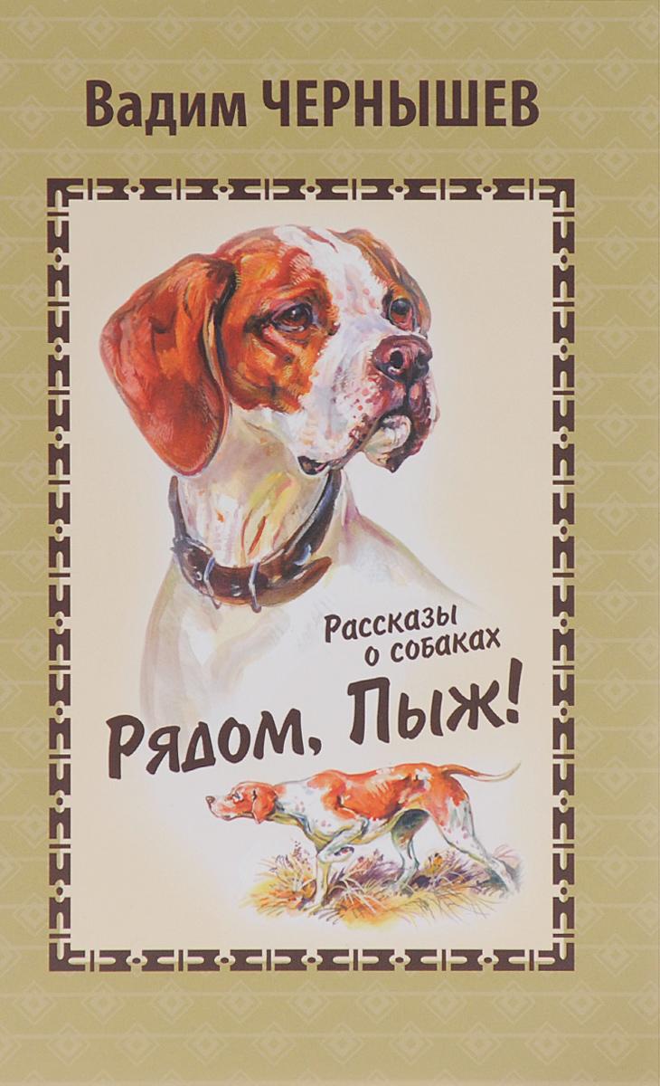 Вадим Чернышев Рядом, Пыж! Рассказы о собаках иллюстрированная книга о собаках