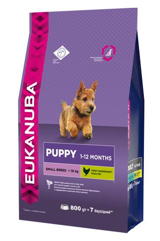 Корм Eukanuba Dog, для щенков мелких пород, 800 г10137692Корм сухой полнорационный Eukanuba для щенков мелких пород от 1 до 12 месяцев (до 10 кг). Профессиональное сбалансированное питание, специально разработанное с учетом особенностей щенков мелких пород в возрасте от 1 до 12 месяцев.1. ФИЗИЧЕСКАЯ ФОРМА Высокий уровень животных белков помогает формировать и поддерживать мышечную массу у щенков.2. РОСТ Кальций, эффективность которого клинически доказана, способствует укреплению костей. 3. РАЗВИТИЕ Докозагексаеновая кислота (ДГК), эффективность которой клинически доказана, помогает щенкам становиться более смышлеными и способными к обучению и дрессировке.4. ЗАЩИТА Антиоксиданты способствуют поддержанию естественной защиты организма щенков. Условия хранения: в прохладном темном месте