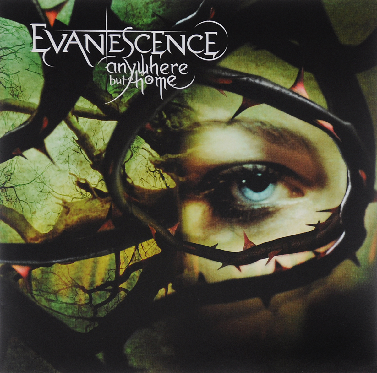 Evanescence Evanescence. Anywhere But Home evanescence evanescence synthesis limited deluxe