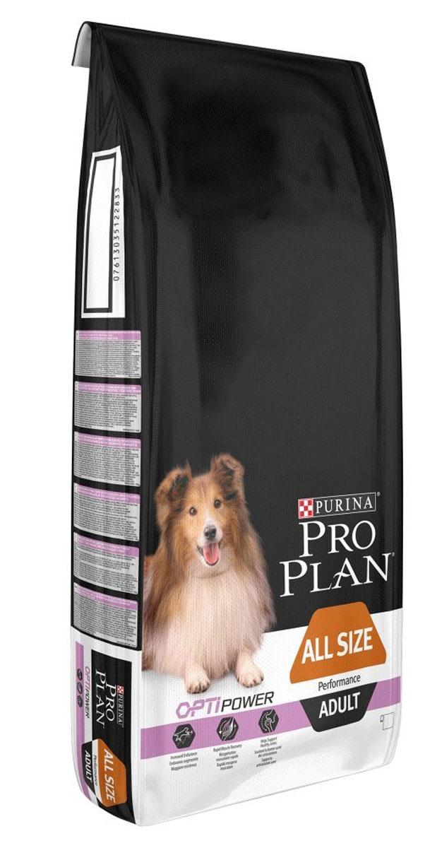 Корм сухой Pro Plan Performance, для активных собак, с курицей и рисом, 14 кг12272570Сухой корм Pro Plan Performance - полнорационный корм для активных собак, с комплексом Optihealth, с высоким содержанием курицы. Оптимальное питание является основой здоровья и благополучия. Корм с комплексом Optihealth предоставляет современное питание, которое оказывает долгосрочное влияние на здоровье собаки. Комплекс Optihealth сочетает специально отобранные питательные вещества, необходимые собакам разных размеров и телосложения, поддерживает их особые потребности и помогает сохранить им отличное состояние.Особенности:- сочетание компонентов для здоровья зубов и десен,- высокая усвояемость питательных веществ для удовлетворения потребностей вашей собаки, - сочетание основных питательных веществ, которое помогает поддерживать здоровье суставов вашей собаки при активном образе жизни, - помогает собаке сохранять блестящую шерсть, - содержит кусочки высококачественного куриного мяса. Состав: курица (18%), пшеница, сухой белок птицы, глютен, животный жир, кукуруза, продукты переработки растительного сырья, рис (4%), вкусоароматическая кормовая добавка, сухая мякоть свеклы, минеральные вещества, рыбий жир, кукурузная мука, витамины, антиоксиданты.Товар сертифицирован.