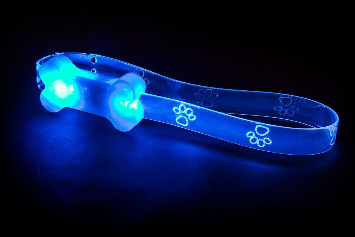 Светящийся ошейник для щенков Flash & Glow LED6066Вы теряете собачьи игрушки на прогулках в темное время суток? Ваша собака зашла в кусты и вечером ее плохо видно? Теперь есть решение этих проблем! Аксессуары для собак компанииAmerican Dog Toys светятся в темноте!