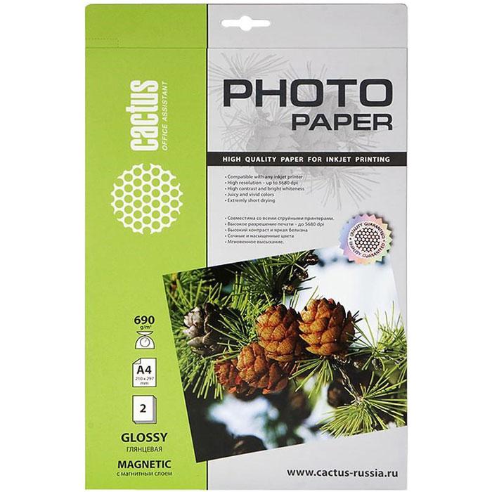 Cactus CS-MGA46902 глянцевая фотобумага с магнитным слоем фотобумага юлмарт