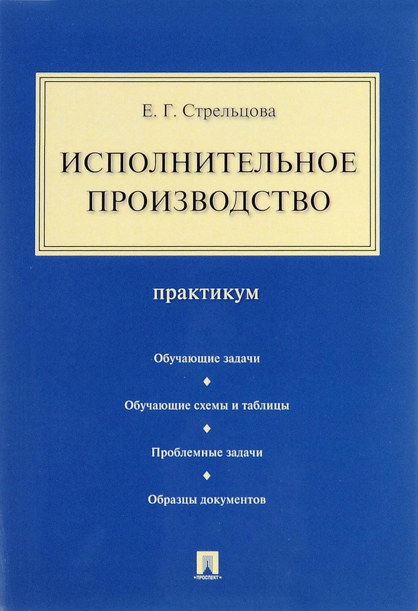 Е. Г. Стрельцова Исполнительное производство. Практикум