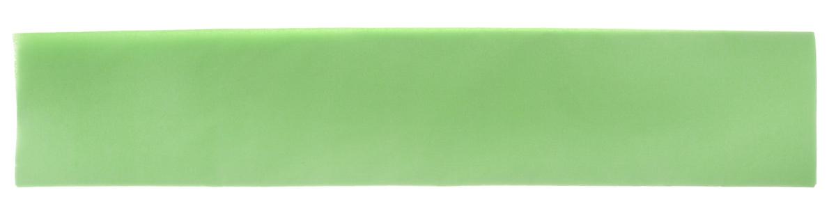 Бумага крепированная Феникс+, цвет: светло-зеленый, 50 х 250 см39522Крепированная бумага Феникс+ - отличный вариант для воплощениятворческих идей не только детей, но и взрослых. Она отлично подойдет дляупаковки хрупких изделий, при оформлении букетов, создании сложных цветовыхкомпозиций, для декорирования и других оформительских работ. Бумага обладаетповышенной прочностью и жесткостью, хорошо растягивается, имеет жатуюповерхность.Кроме того, крепированная бумага Феникс+ поможет увлечь ребенка,развивая интерес к художественному творчеству, эстетический вкус ивосприятие, увеличивая желание делать подарки своими руками, воспитываясамостоятельность и аккуратность в работе. Такая бумага поможет вашему ребенку раскрыть свои таланты.Размер: 50 см х 250 см.Плотность: 22 г/м2.