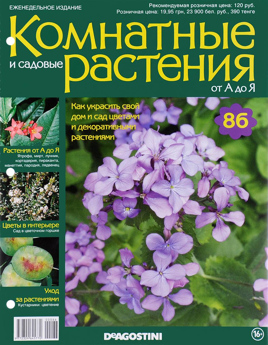 Журнал Комнатные и садовые растения. От А до Я №86 лесоповал я куплю тебе дом lp