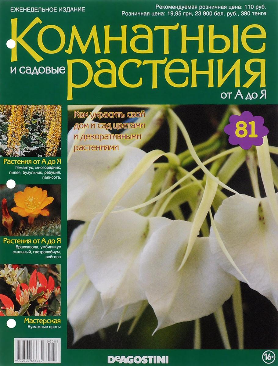 Журнал Комнатные и садовые растения. От А до Я №81 журнал комнатные и садовые растения от а до я 141