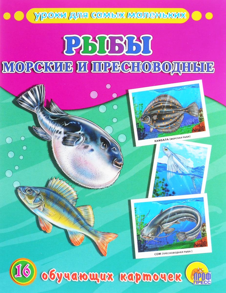 Рыбы. Морские и пресноводные (набор из 16 обучающих карточек)