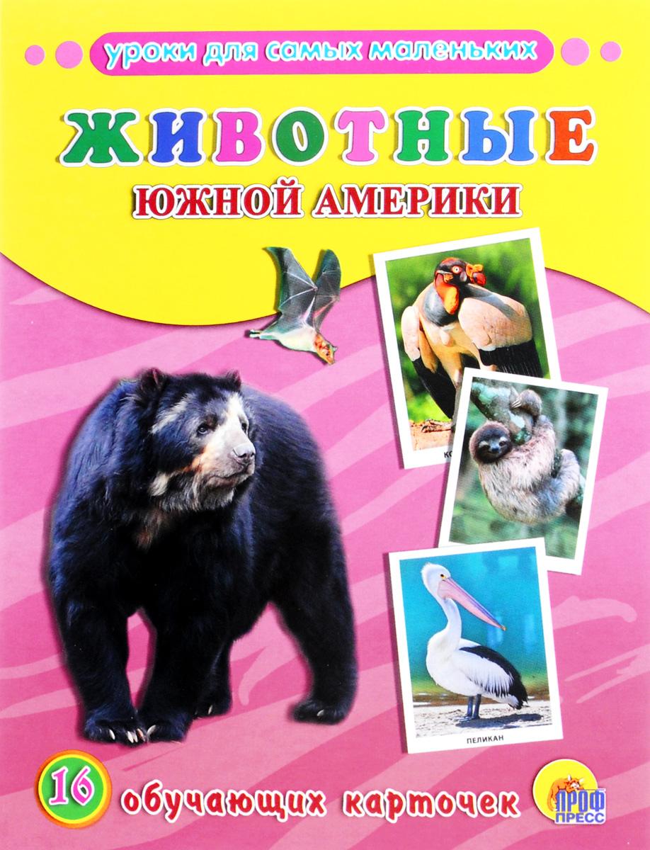 Животные Южной Америки (набор из 16 обучающих карточек)