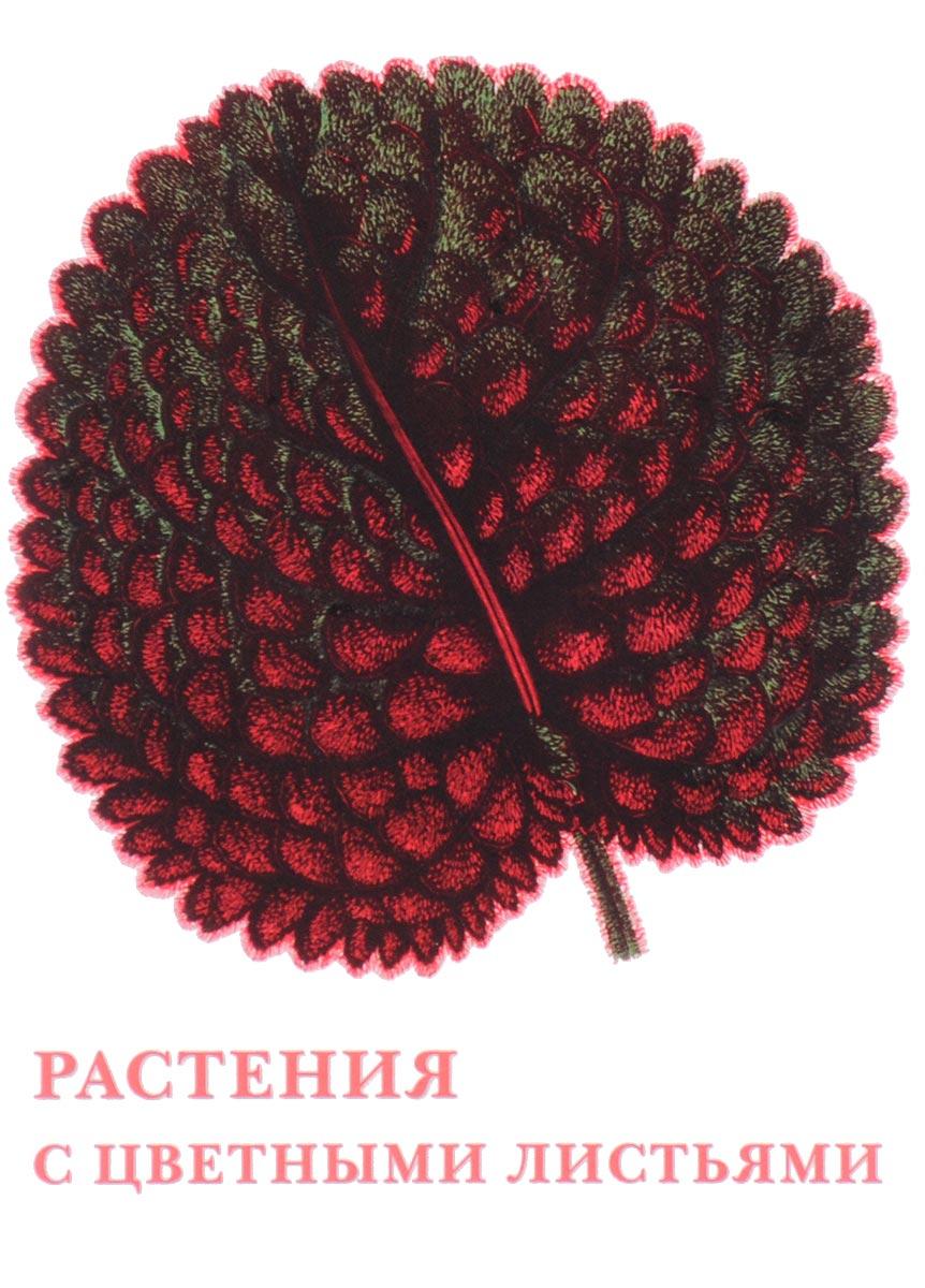 , Растения с цветными листьями (набор из 15 открыток) рыбы набор из 15 открыток