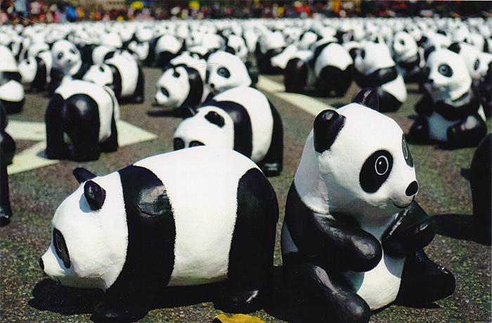 Paper Panda Show. Открытка
