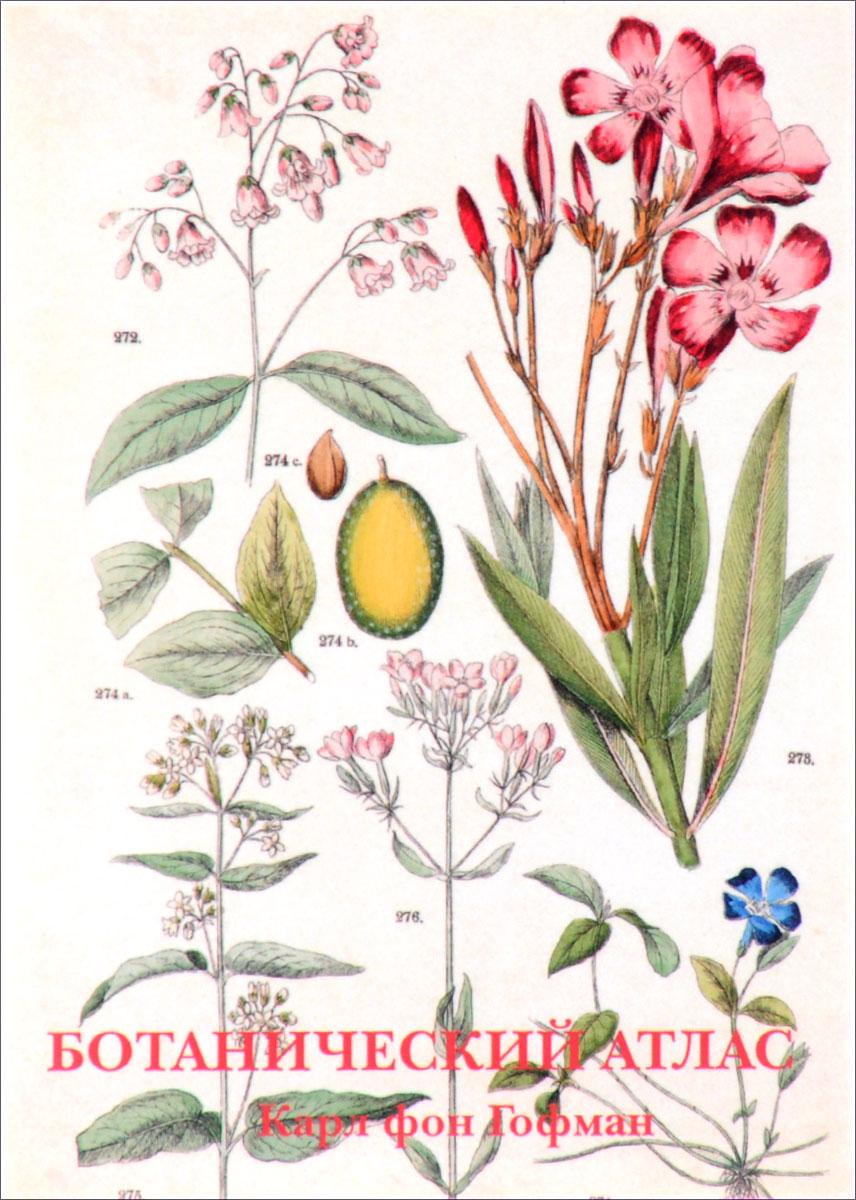 , Ботанический атлас (набор из 15 открыток) рыбы набор из 15 открыток