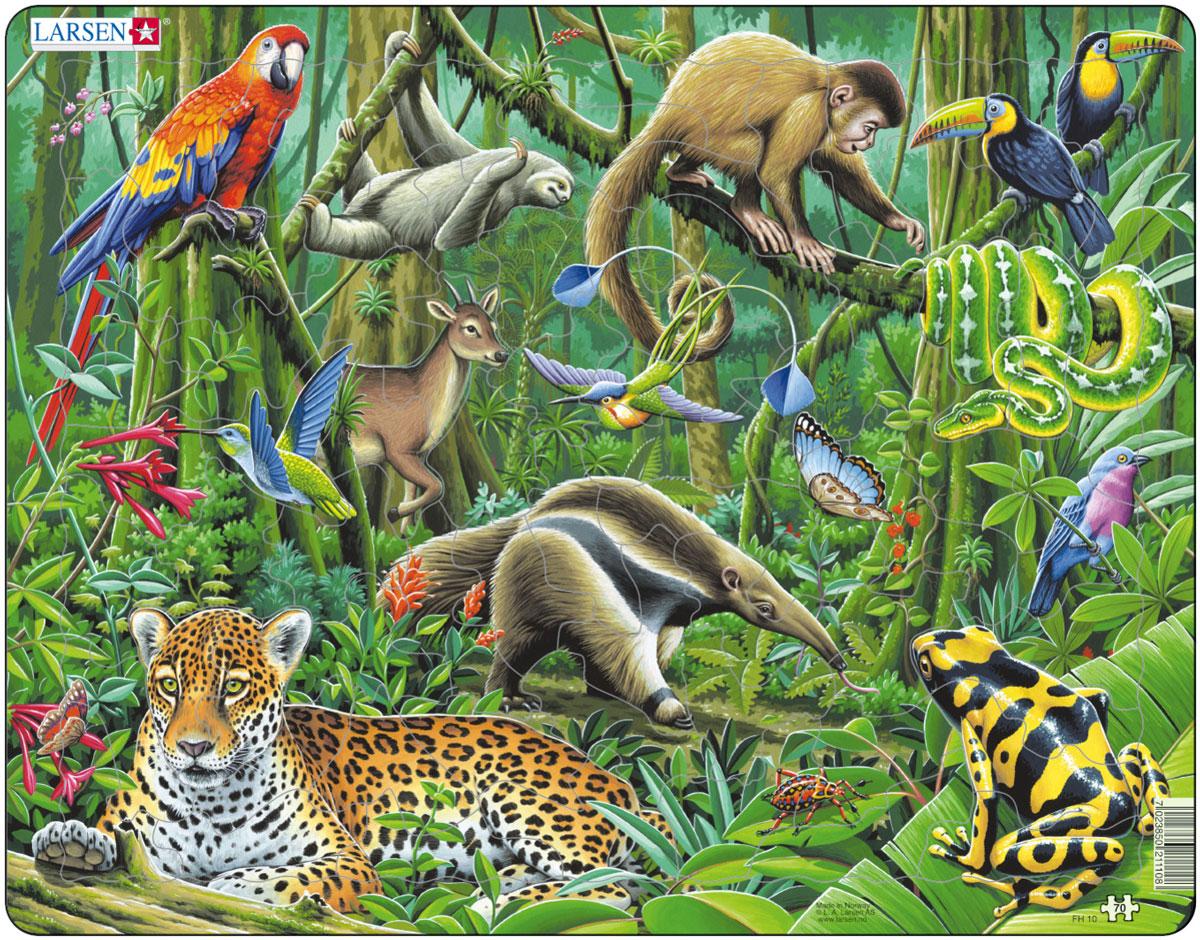 Larsen Пазл Южно-американские тропики