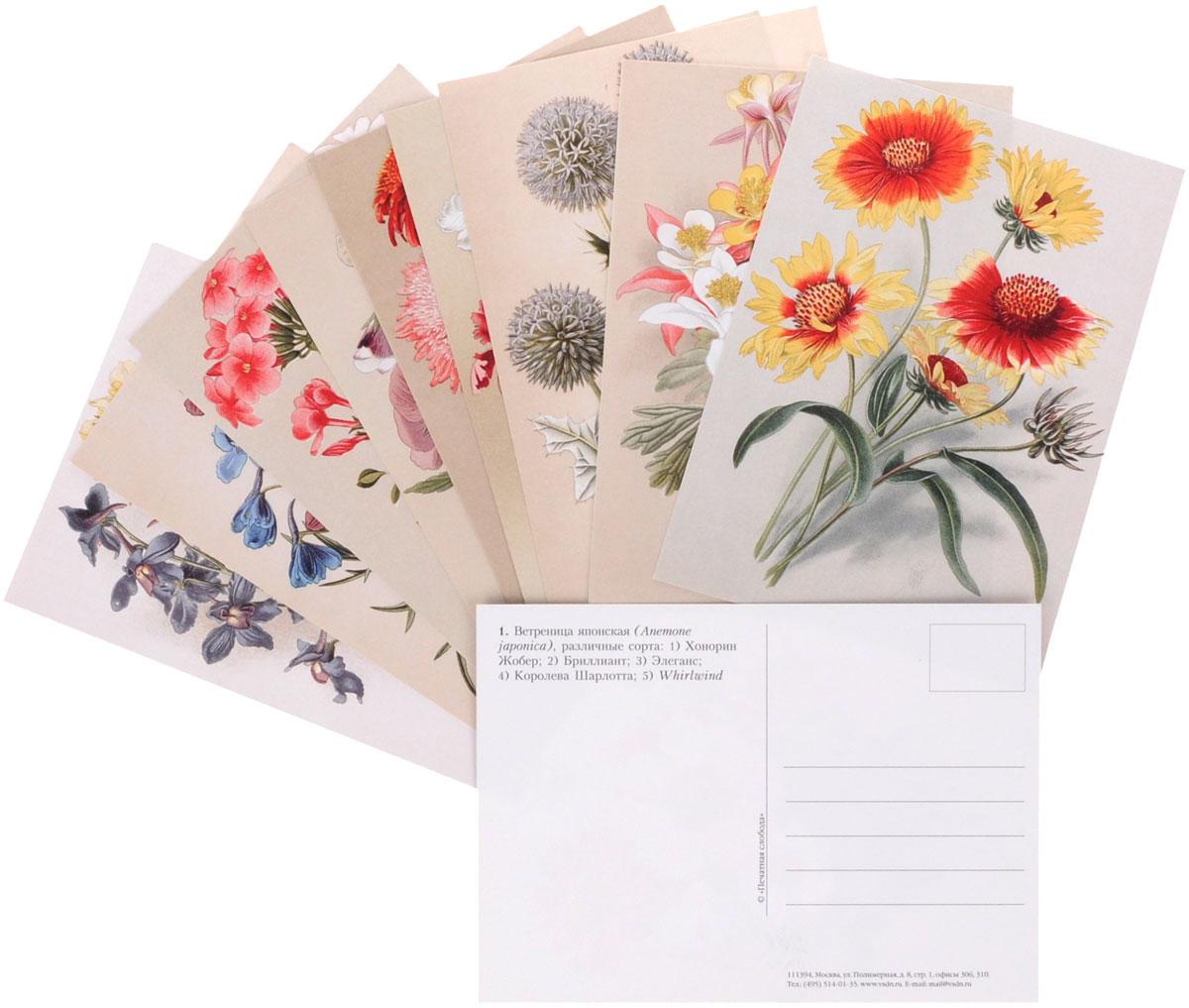 касается наборы для открыток цветы сборы ребенка перед
