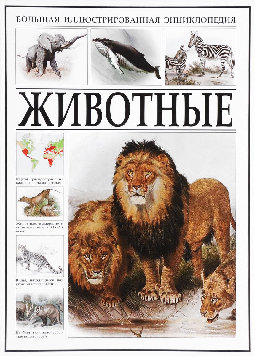 Животные. Большая иллюстрированная энциклопедия бологова в моя большая книга о животных 1000 фотографий