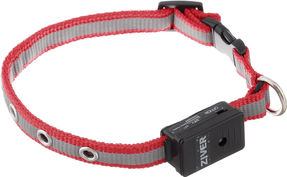 Ошейник Ziver Sensor для кошек и собак мелких пород, светящийся, цвет: красный, серый40.ZV.217Светящийся ошейник Ziver Sensor - это очередная новинка для мелких животных от компании ZIVER.Ошейник идеален для кошек и собак мелких пород, он поможет видеть их при прогулке в темное время суток, и теперь вы не потеряете их из виду. Ziver Sensor обезопасит ваше животное от попадания под автомобиль, так как водитель сможет заметить приближающуюся собаку на расстоянии до 800 метров.Ошейник работает в режиме автоматического включения при наступлении темноты, для включения этой функции поставьте выключатель в положение ON, для выключения - в положение OFF. Мигает красными огнями. Особенности ошейника:- автоматическое включение при наступлении темноты;- кнопка выключения светосенсора;- в темное время суток виден на расстоянии до 800 метров; - время работы батарейки - 40 часов; - крепкий и надежный карабин; - регулируемый размер;- мягкая подкладка комфортна для животного;- работает при температуре от -5°C до +30°C;- оснащен светоотражающей полоской; - влагозащищен от дождя и снега (не рекомендуем погружать в воду батарейный блок). Работает от двух батареек типа AG10 (входят в комплект). Длина ошейника: 25-27 см. Ширина ошейника: 1,2 см.