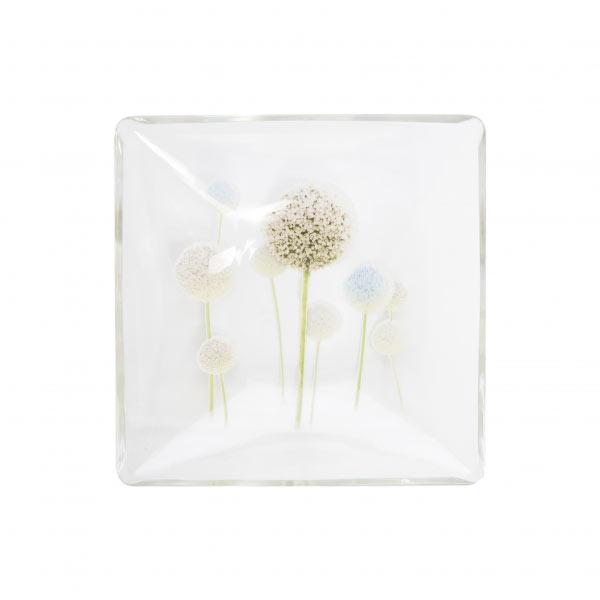Миска Luminarc Eternal Spring, 16 х 16 смH8812Миска Luminarc Eternal Spring, декорированная красивым цветочным рисунком, изготовлена из высококачественного ударопрочного стекла. Изделие устойчиво к повреждениям и истиранию, в процессе эксплуатации не впитывает запахи и сохраняет первоначальные краски. Миска подходит для подачи жидких блюд, каш, мюсли и многого другого. Посуда Luminarc обладает не только высокими техническими характеристиками, но и красивым эстетичным дизайном. Luminarc - это современная, красивая, практичная столовая посуда.Можно использовать в СВЧ и посудомоечной машине.