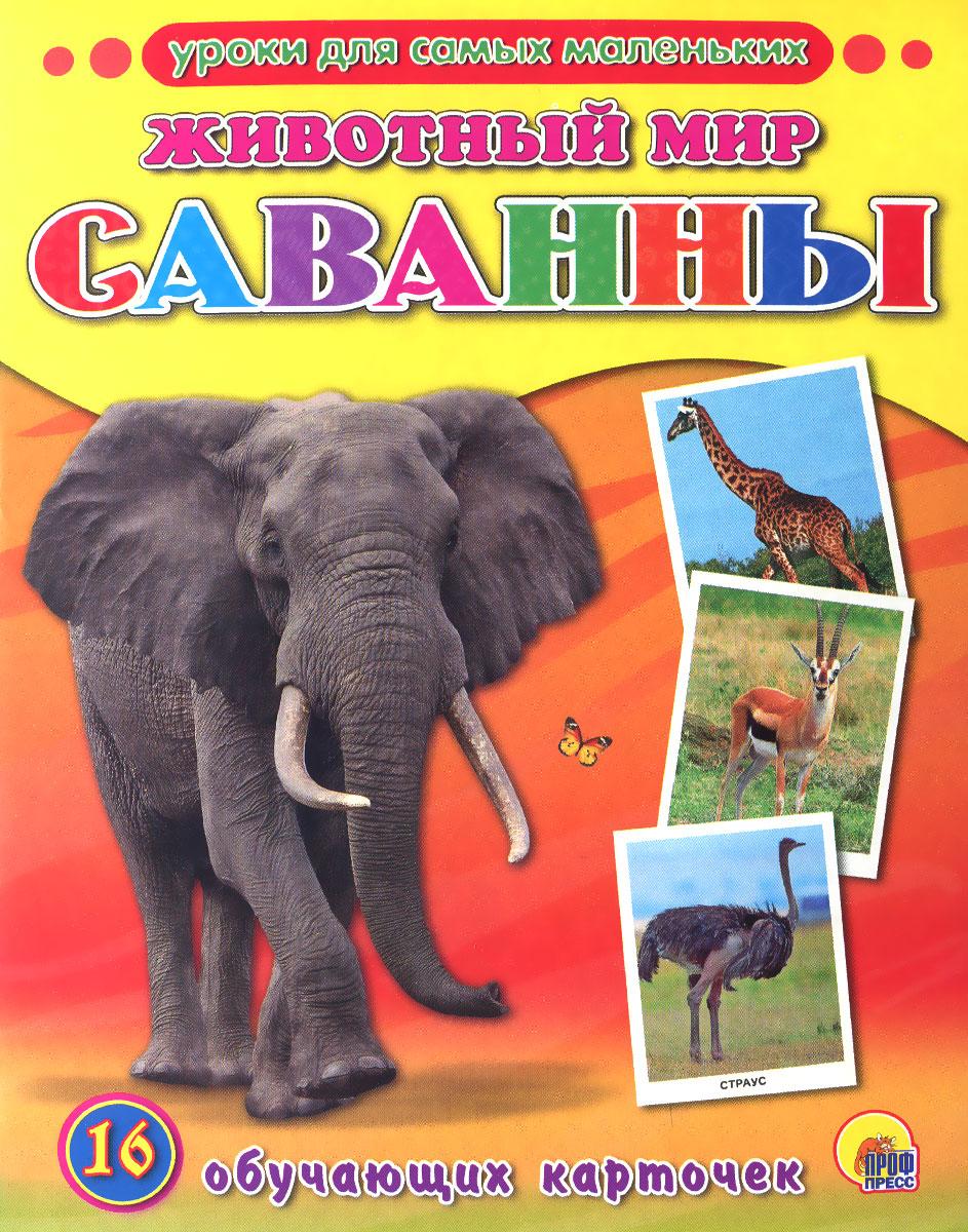 Животный мир. Саванны (набор из 16 обучающих карточек)