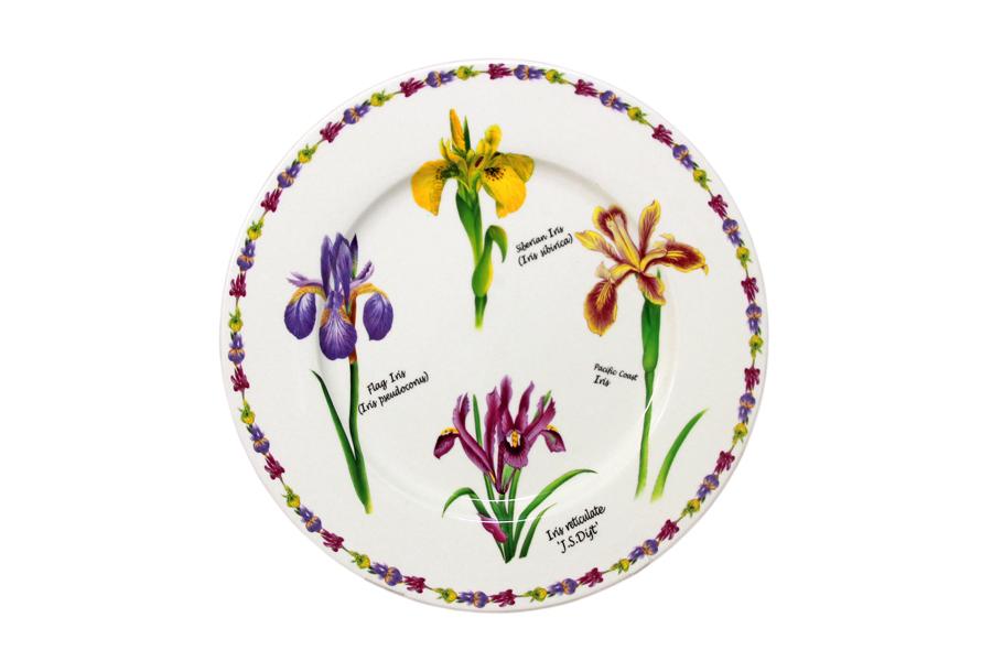 """Тарелка """"Ирисы"""" выполнена из высококачественной керамики и декорирована  рисунком с изображением ирисов. Красочность оформления придется по вкусу и  ценителям классики, и тем, кто предпочитает утонченность и изысканность. Такая тарелка украсит сервировку вашего стола и подчеркнет прекрасный вкус  хозяина, а также станет отличным подарком.   Изделия торговой марки """"Imari"""" произведены из высококачественной керамики,  основным ингредиентом которой является твердый доломит, поэтому все  керамические изделия """"Imari"""" - легкие, белоснежные, прочные и устойчивы к  высоким температурам. Высокое качество изделий достигается не только  благодаря использованию особого сырья и новейших технологий и  оборудования при изготовлении посуды, но также благодаря строгому контролю  на всех этапах производственного процесса. Нанесение сверкающей глазури,  не содержащей свинца, придает изделиям """"Imari"""" превосходный блеск и особую  прочность. Красочные и нежные современные декоры """"Imari"""" - это результат  профессиональной работы дизайнеров, которые ежегодно обновляют  ассортимент и предлагают покупателям десятки новый декоров. Свою  популярность торговая марка """"Imari"""" завоевала благодаря высокому качеству  изделий, стильным современным дизайнам, широчайшему ассортименту  продукции, прекрасным подарочным упаковкам и низким ценам."""