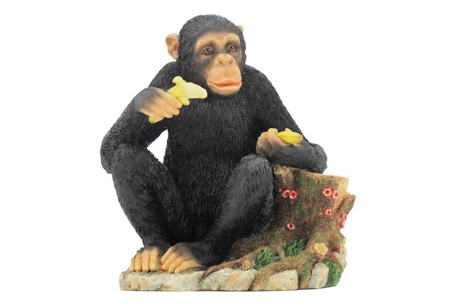 Статуэтка Обезьяна с бананом. VWU69562AAALVWU69562AAALVeronese - это торговая марка, представляющая широкий ассортимент художественных изделий из полистоуна, выполненных по эскизам итальянских дизайнеров и художников.Полистоун представляет собой специальную массу с полимерными связующими материалами, которые абсолютно не токсичны.