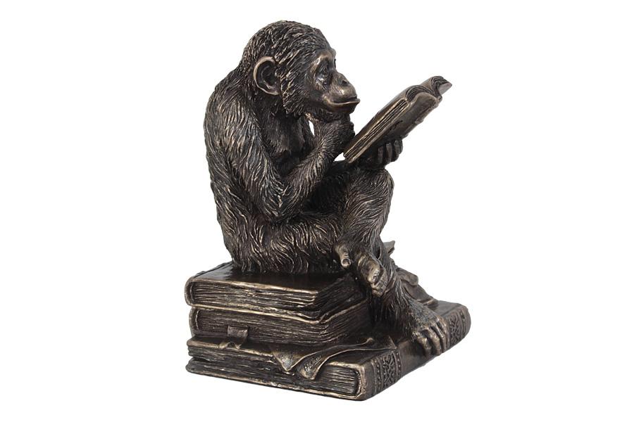 Статуэтка Veronese Обезьяна с книгой, 10,5 х 10 х 14 смVWU76560A1ALДекоративная статуэтка Veronese Обезьяна с книгой, изготовленная из высококачественного полистоуна, выполнена в виде обезьяны, читающей книгу. Такая статуэтка прекрасно дополнит интерьер офиса или дома. Вы можете поставить ее в любом месте, где она будет удачно смотреться и радовать глаз.Полистоун представляет собой специальную массу с полимерными связующими материалами, которые абсолютно не токсичны.
