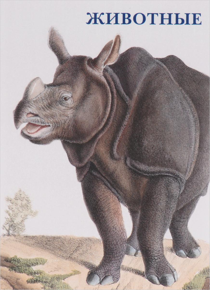 Животные (набор из 15 открыток) ирина круглова максим китаев хеллоу хуман набор из 12 открыток