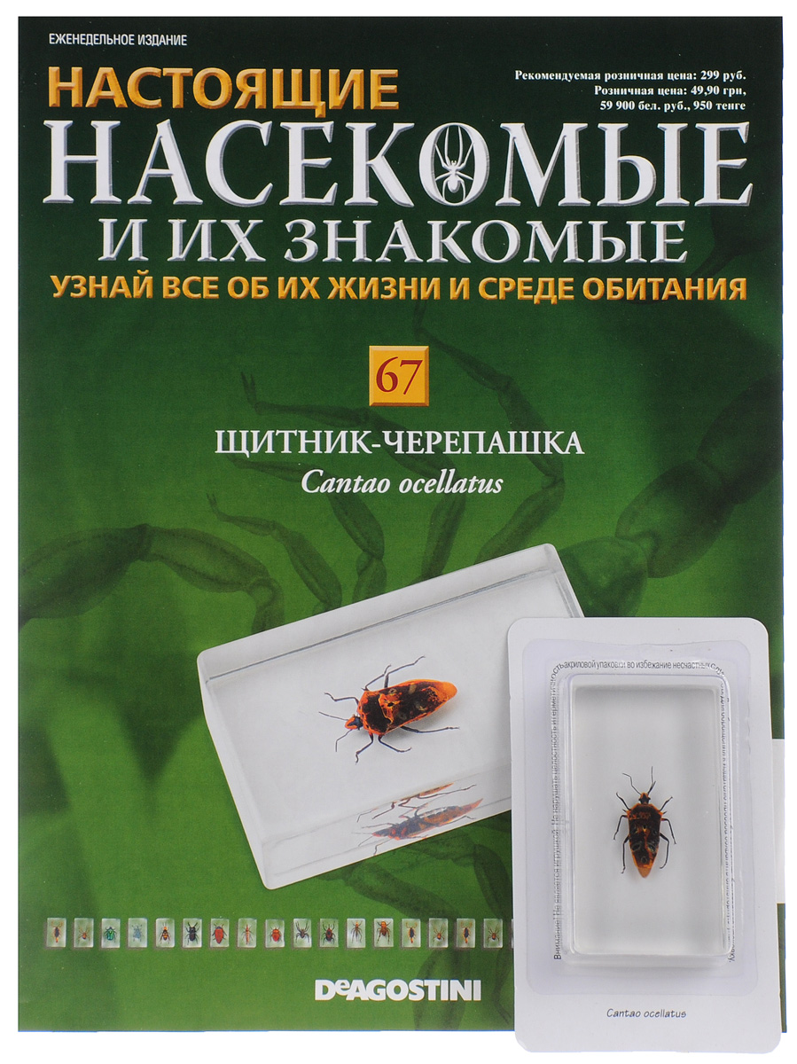 Журнал Насекомые и их знакомые №67 журнал насекомые и их знакомые 57