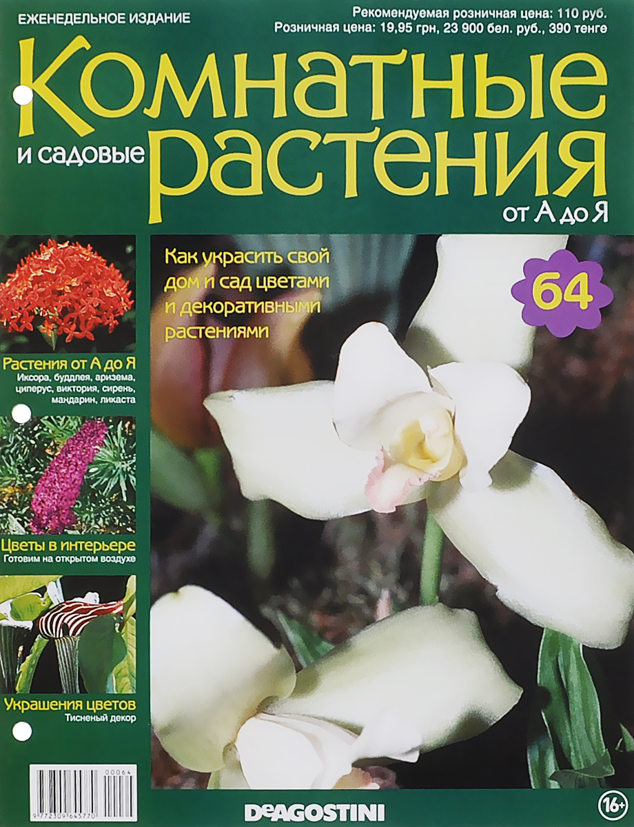 Журнал Комнатные и садовые растения. От А до Я №64 год до школы от а до я тетрадь по подготовке к школе